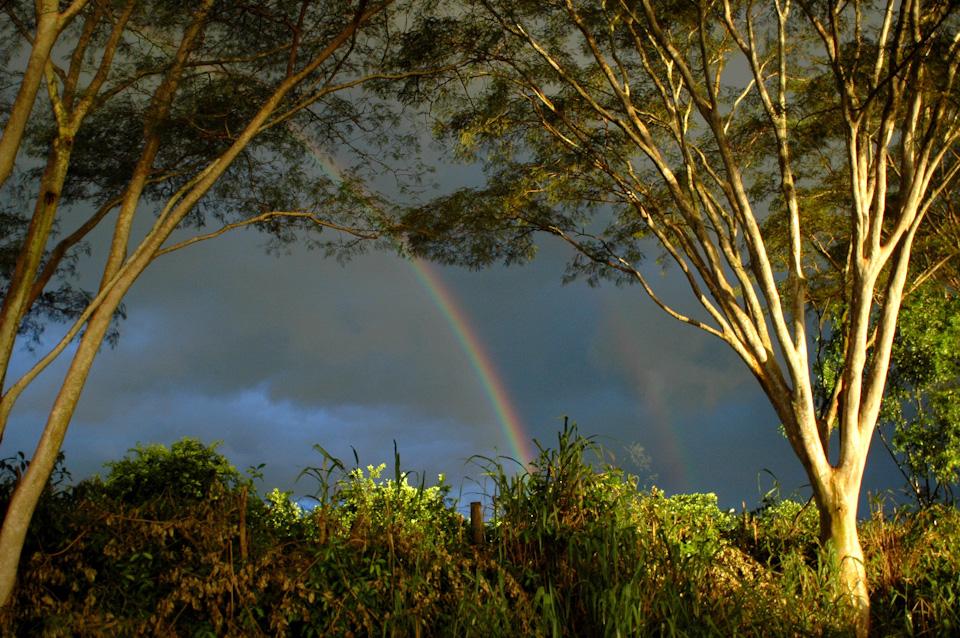 tabapuadocorrego.com.br a corrego 5