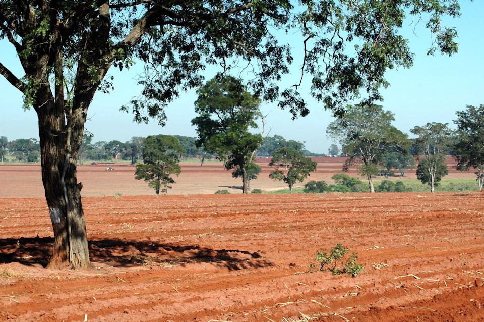 tabapuadocorrego.com.br a corrego 8