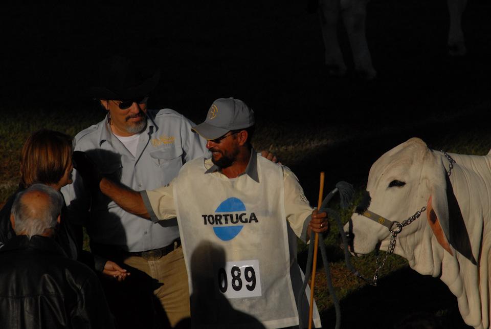 tabapuadocorrego.com.br amigos da corrego 165