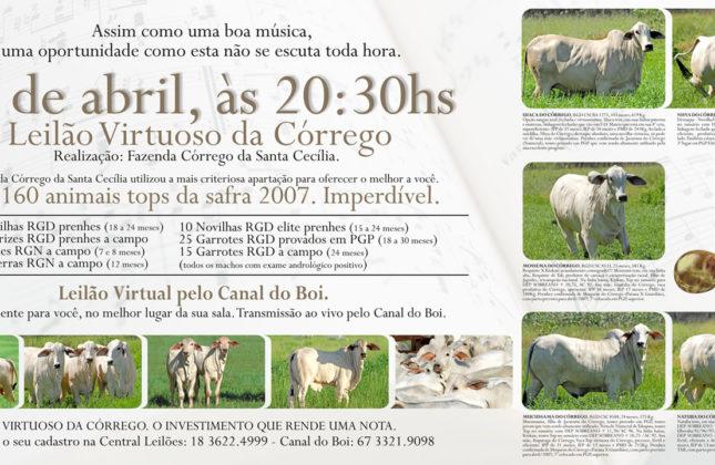 VIRTUOSO DA CÓRREGO 03/2007